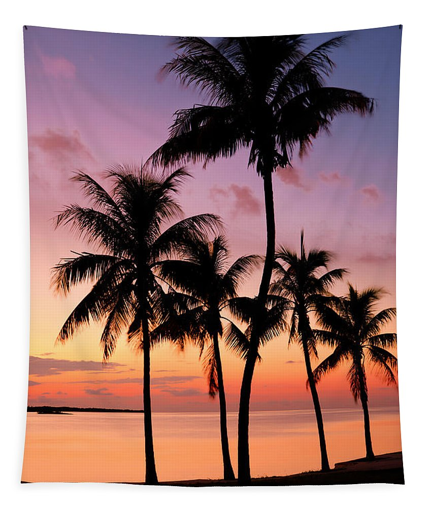 Sunset Tapestry featuring the photograph Florida Breeze by Chad Dutson