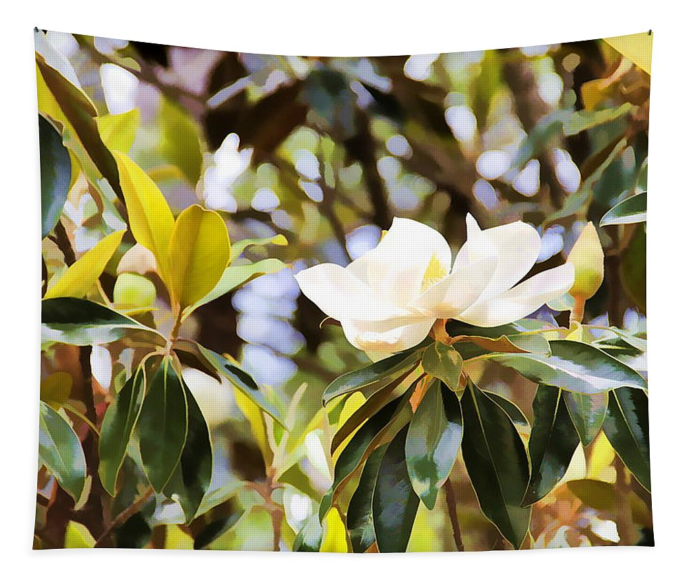 Magnolia Tree Flower Florida Tapestry featuring the photograph Florida Magnolia by Alice Gipson