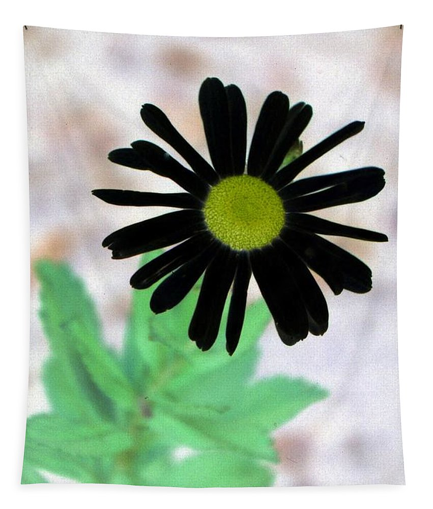 Flower Tapestry featuring the photograph Flower - Daisy - Photopower 327 by Pamela Critchlow