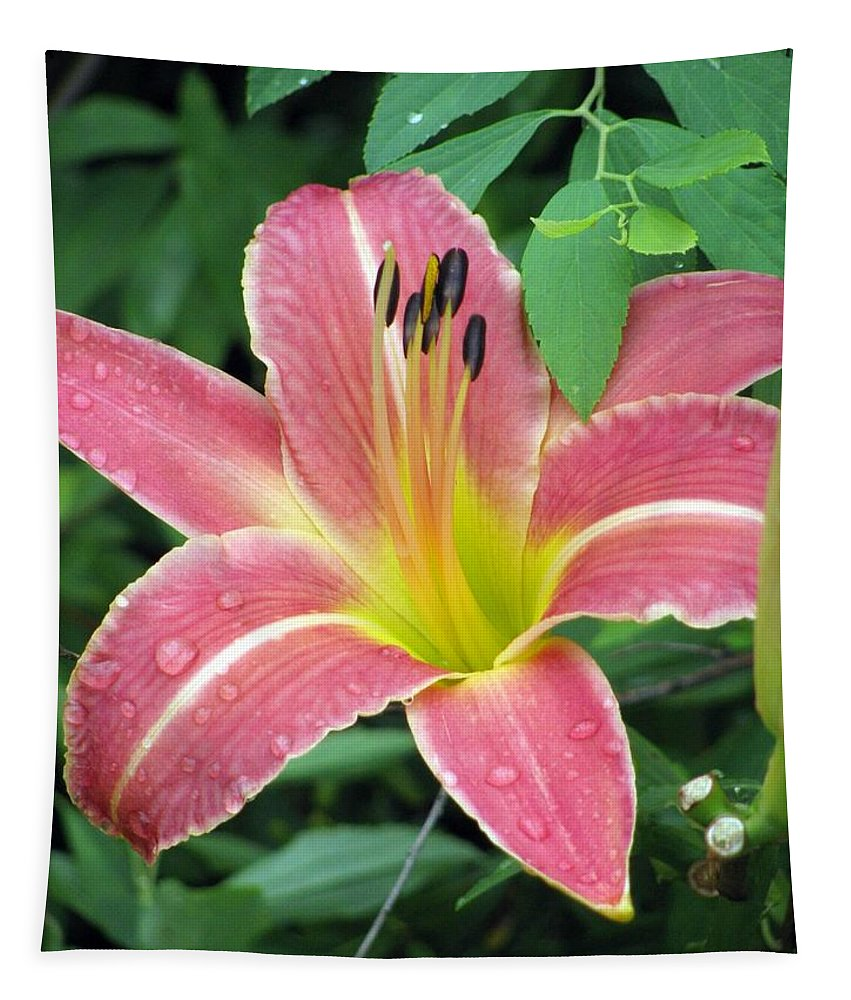 Flower Tapestry featuring the photograph Flower Garden 01 by Pamela Critchlow