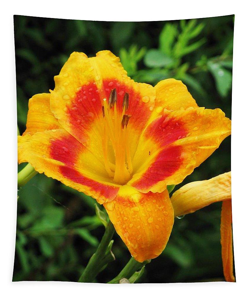 Flower Tapestry featuring the photograph Flower Garden 05 by Pamela Critchlow