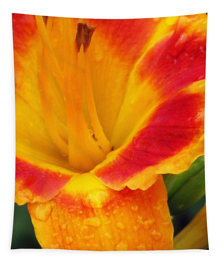 Flower Tapestry featuring the photograph Flower Garden 06 by Pamela Critchlow