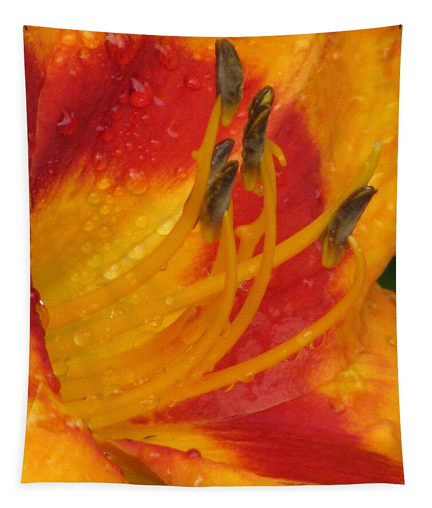 Flower Tapestry featuring the photograph Flower Garden 10 by Pamela Critchlow
