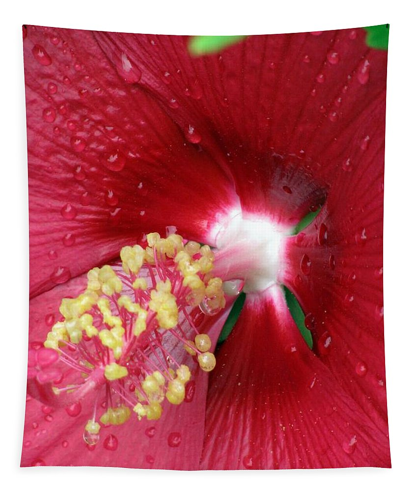 Flower Tapestry featuring the photograph Flower Garden 16 by Pamela Critchlow