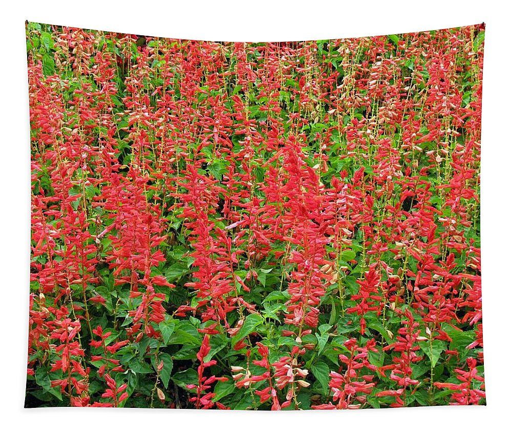 Flower Tapestry featuring the photograph Flower Garden 34 by Pamela Critchlow