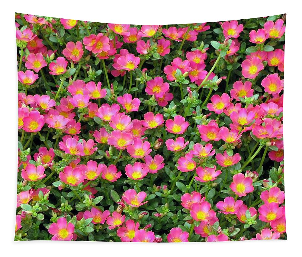 Flower Tapestry featuring the photograph Flower Garden 36 by Pamela Critchlow