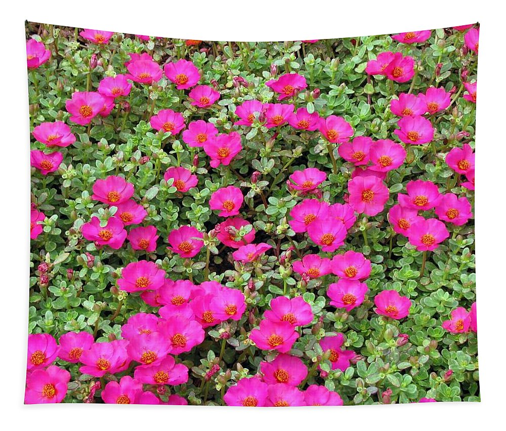 Flower Tapestry featuring the photograph Flower Garden 38 by Pamela Critchlow