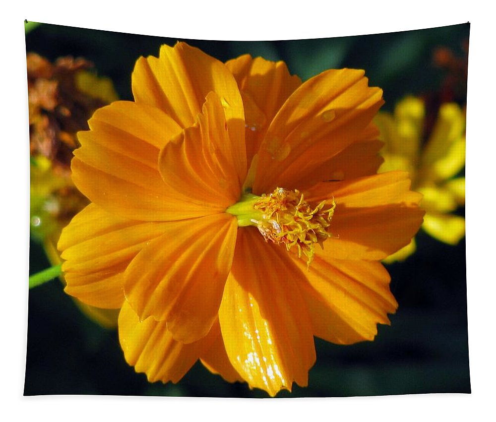 Flower Tapestry featuring the photograph Flower Garden 43 by Pamela Critchlow