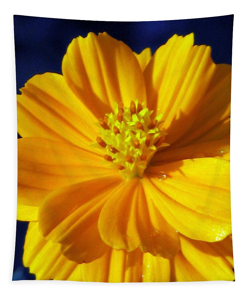 Flower Tapestry featuring the photograph Flower Garden 44 by Pamela Critchlow