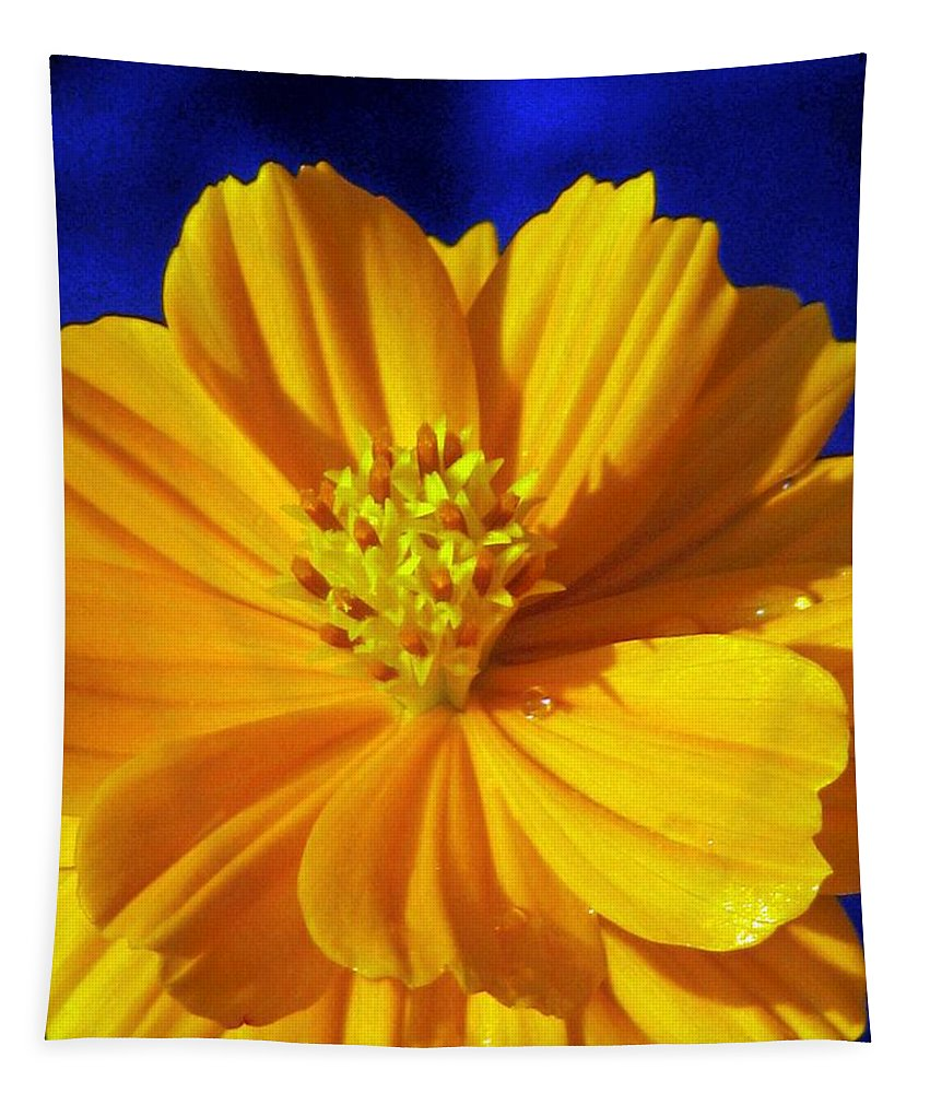 Flower Tapestry featuring the photograph Flower Garden 45 by Pamela Critchlow