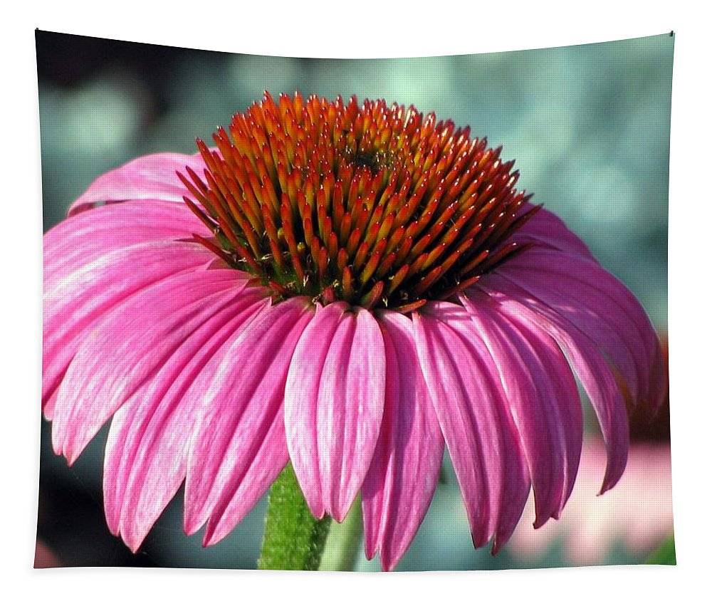 Flower Tapestry featuring the photograph Flower Garden 50 by Pamela Critchlow