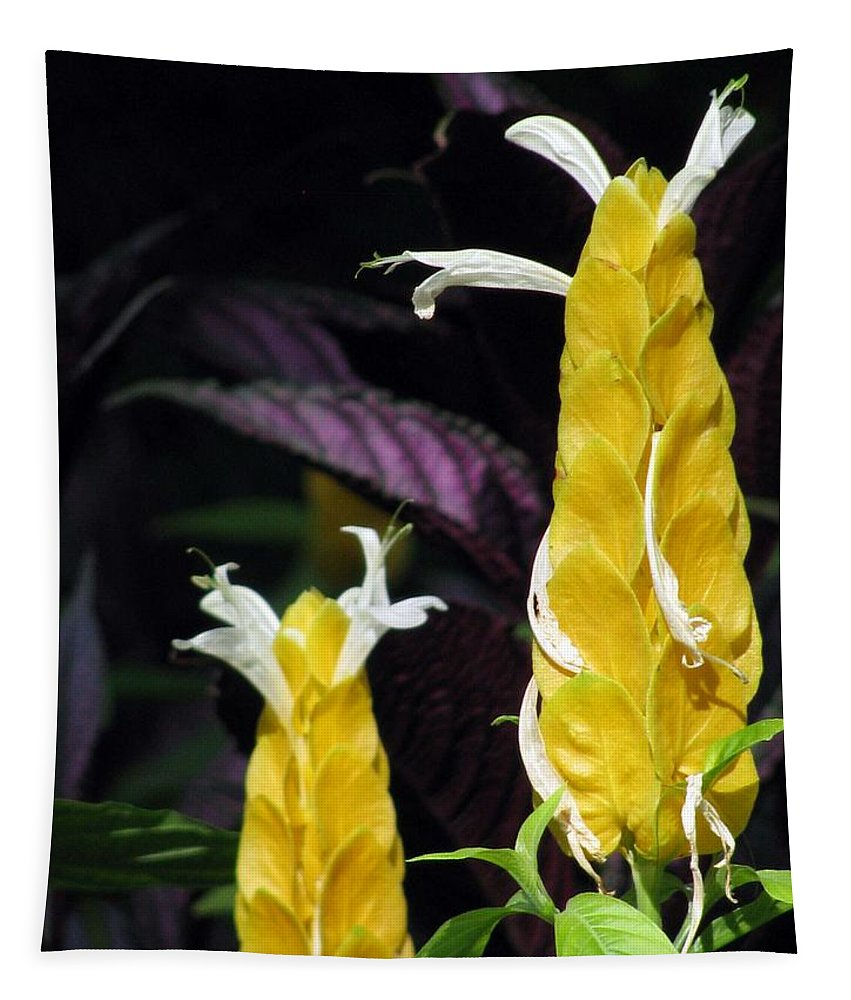 Flower Tapestry featuring the photograph Flower Garden 51 by Pamela Critchlow