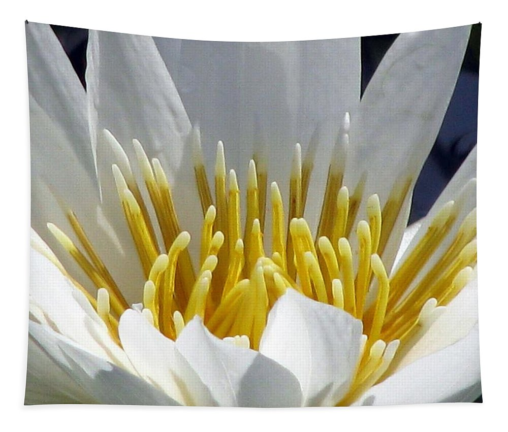 Flower Tapestry featuring the photograph Flower Garden 55 by Pamela Critchlow