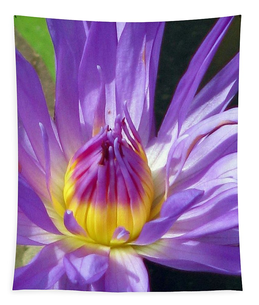 Flower Tapestry featuring the photograph Flower Garden 70 by Pamela Critchlow
