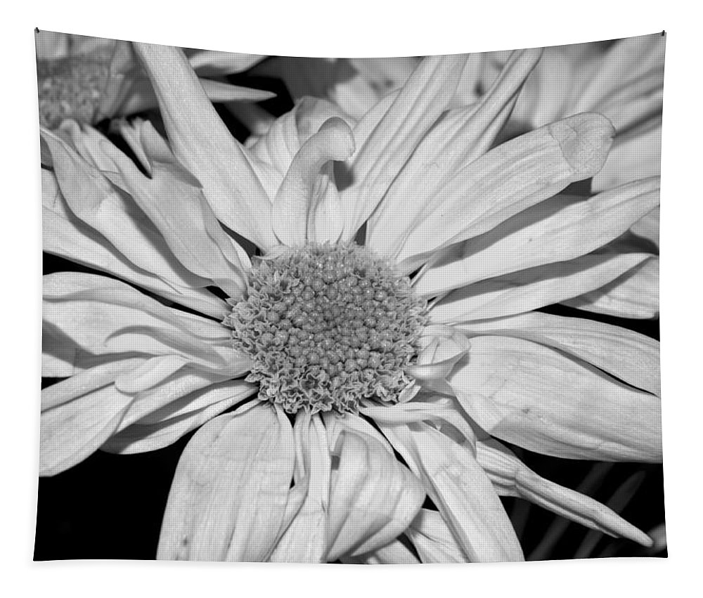 Flower Tapestry featuring the photograph Flower In Black And White by Tikvah's Hope