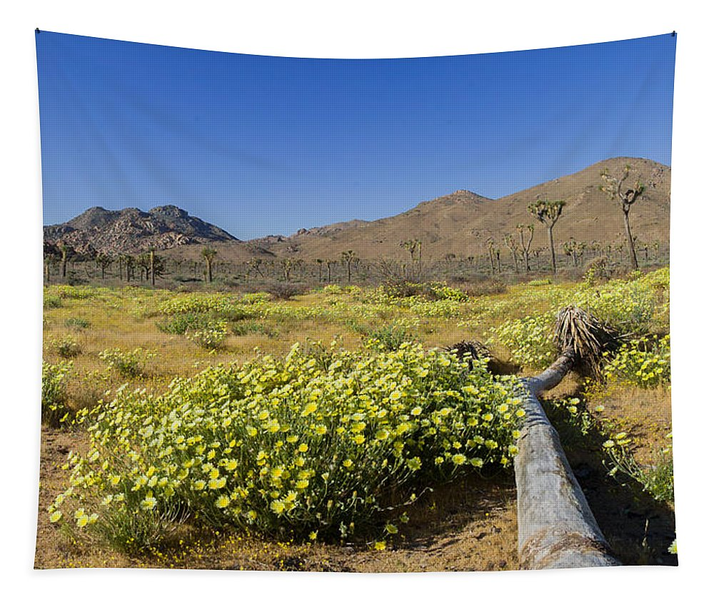 Flower Tapestry featuring the photograph Flowers At The Headstone by Scott Campbell