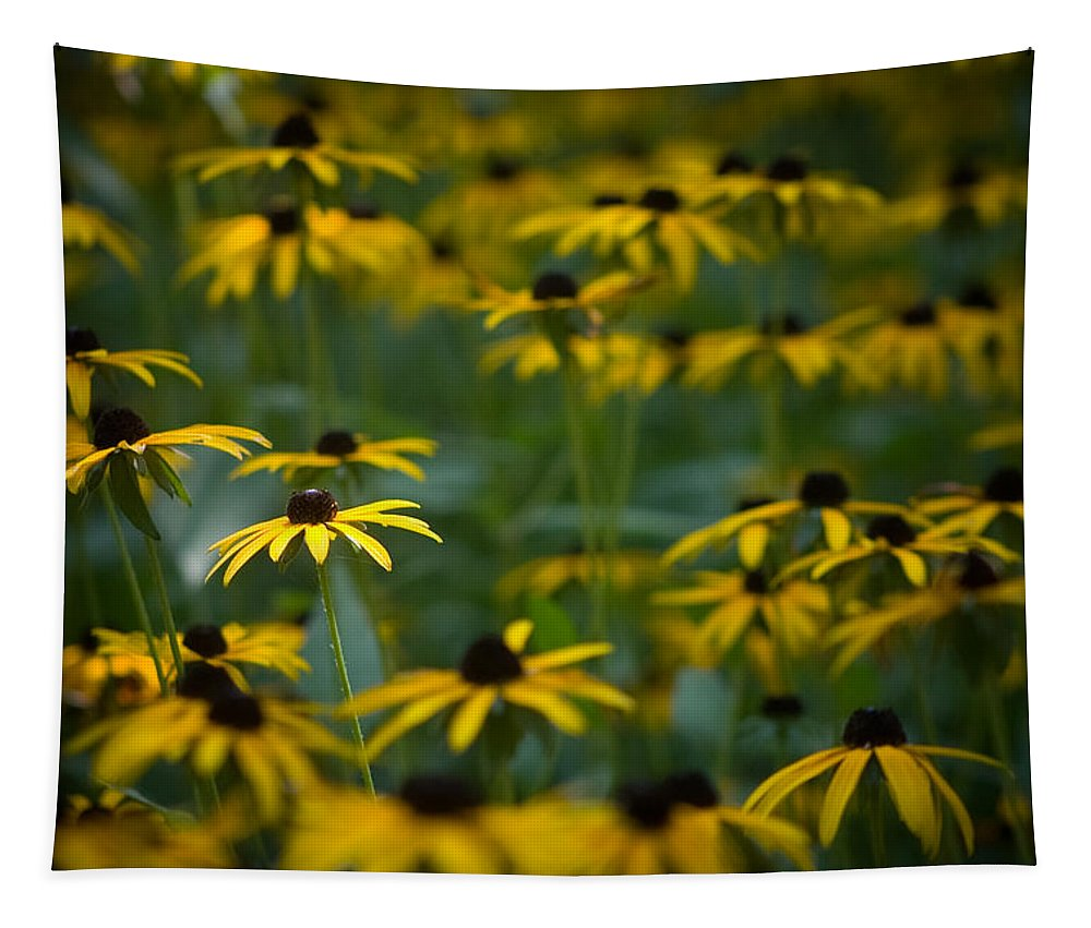 Botanicals Tapestry featuring the photograph Flowers In The Fields by Timothy Bischoff