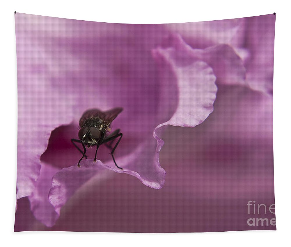 Rhododendron Tapestry featuring the photograph Fly On A Rhododendron by Terri Waters