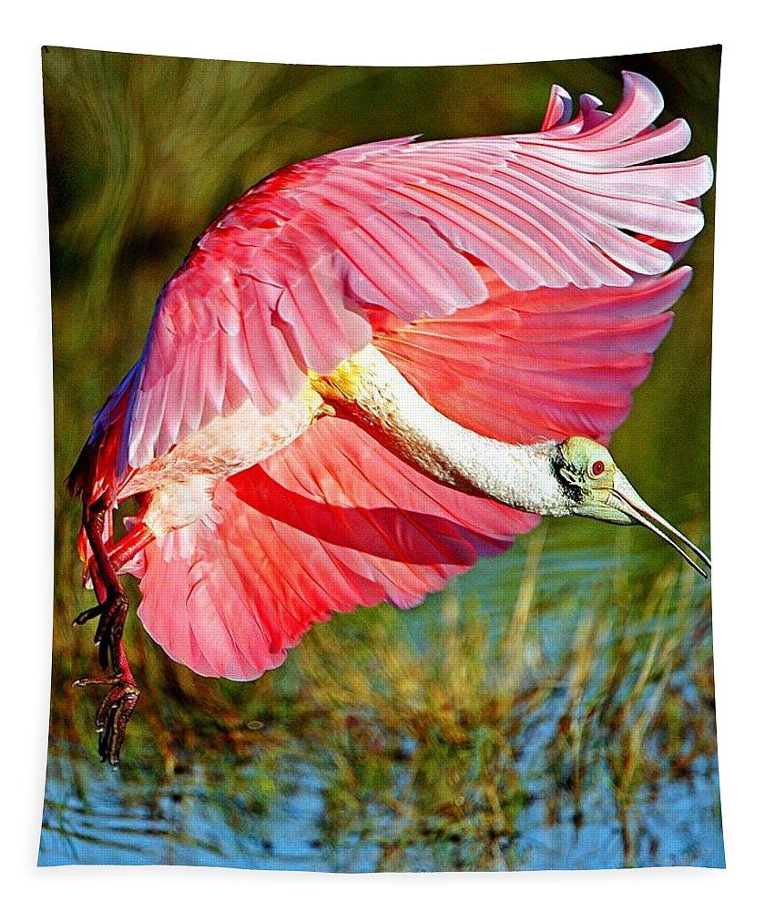 Spoonbill Tapestry featuring the photograph Flying In by Davids Digits