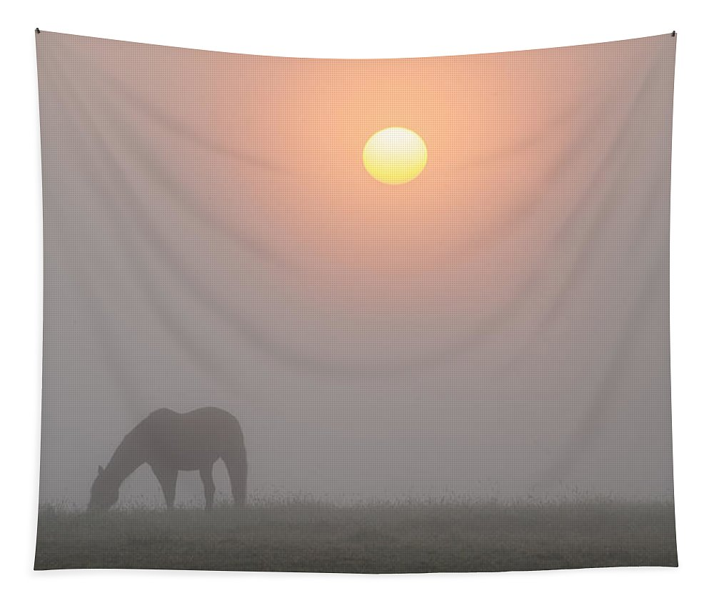 Foggy Tapestry featuring the photograph Foggy Morning Sunrise On The Farm by Bill Cannon