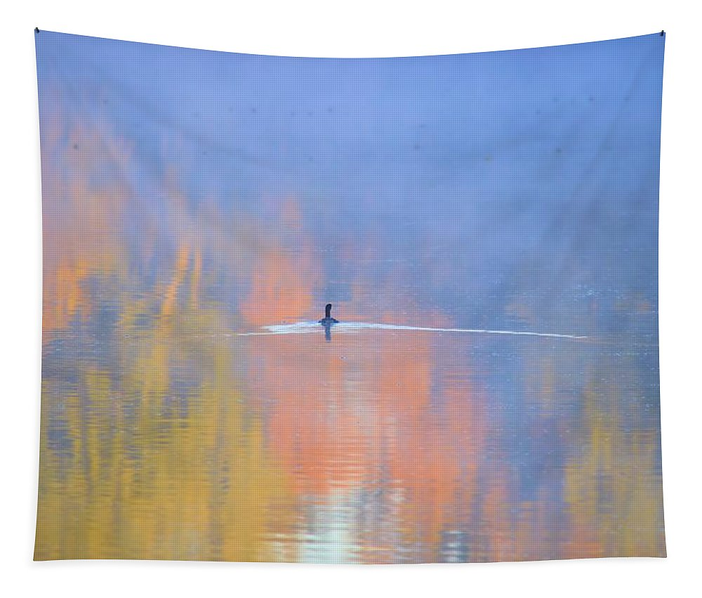 Pond Tapestry featuring the photograph Foggy Swim by Bonfire Photography