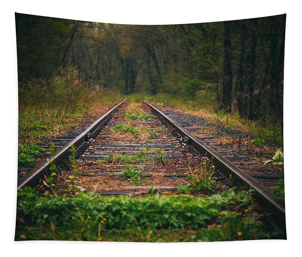 Following The Tracks Tapestry featuring the photograph Following The Tracks by Karol Livote