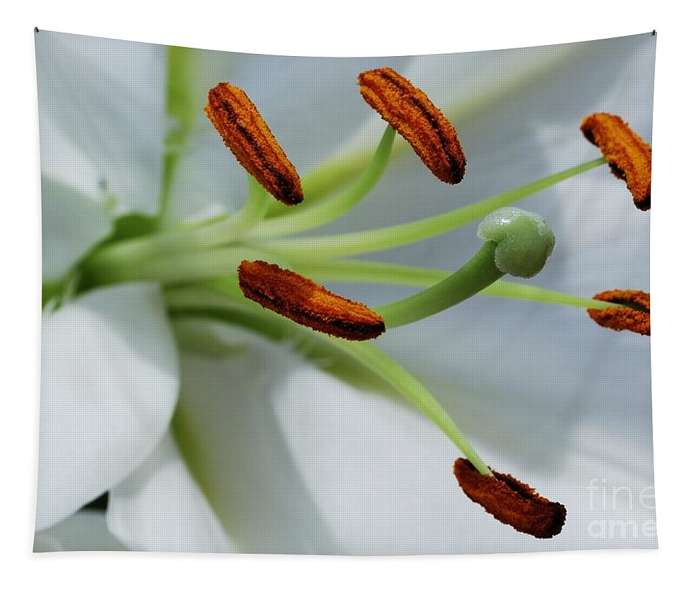 For The Love Of Lilies 8 Tapestry featuring the photograph For The Love Of Lilies 8 by Wendy Wilton