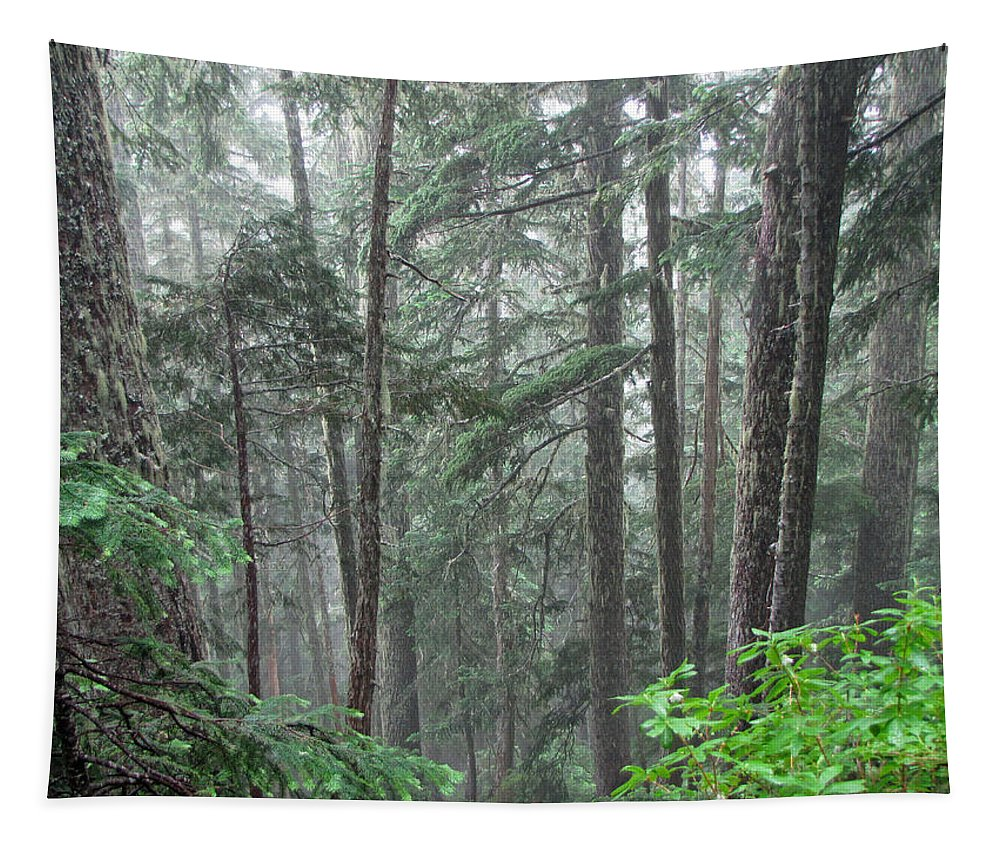 Trees Tapestry featuring the photograph Forest Bluff by Tikvah's Hope