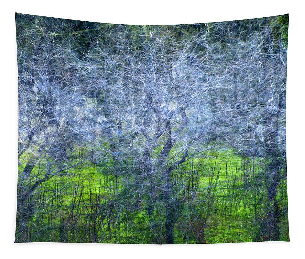 Bosques Tapestry featuring the photograph Forest City by Guido Montanes Castillo