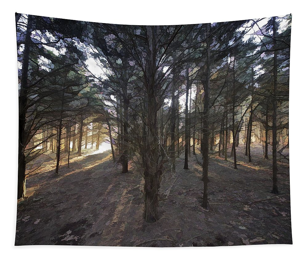 Beautiful Tapestry featuring the photograph Forest Of Light by David Letts