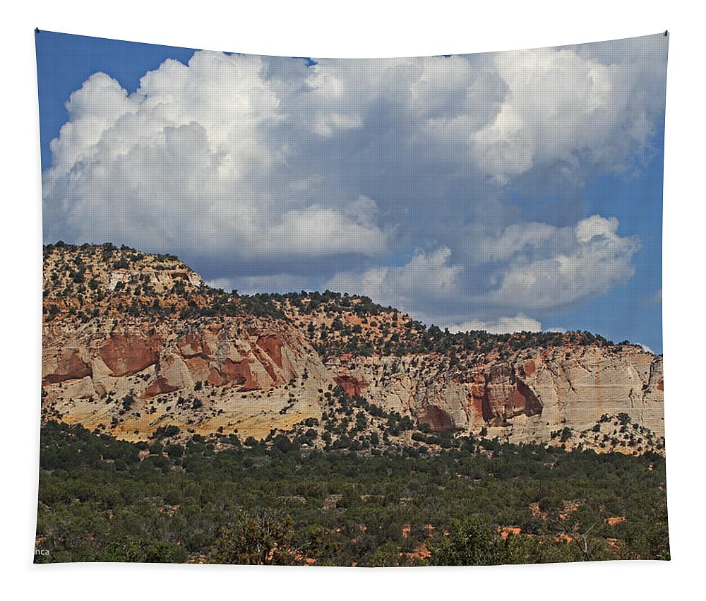 Four Corners Area Tapestry featuring the photograph Four Corners Area by Tom Janca