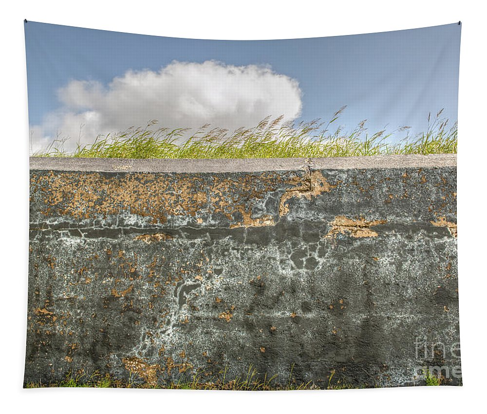 Fort Moultrie Tapestry featuring the photograph Fourt Moultrie Battery Jasper Wall by Dale Powell