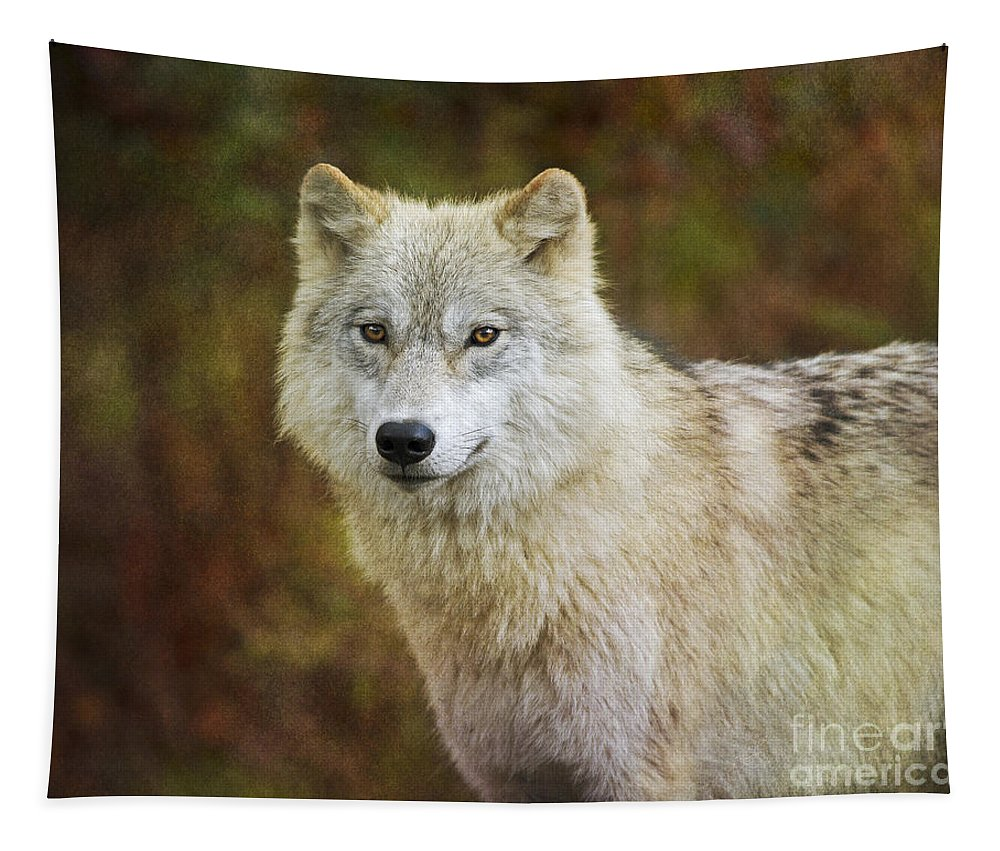 Nina Stavlund Tapestry featuring the photograph Friendly Beauty.. by Nina Stavlund