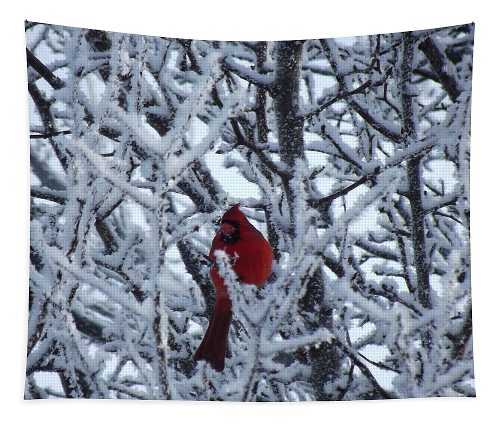 Frost Tapestry featuring the photograph Frosted Card by Bonfire Photography