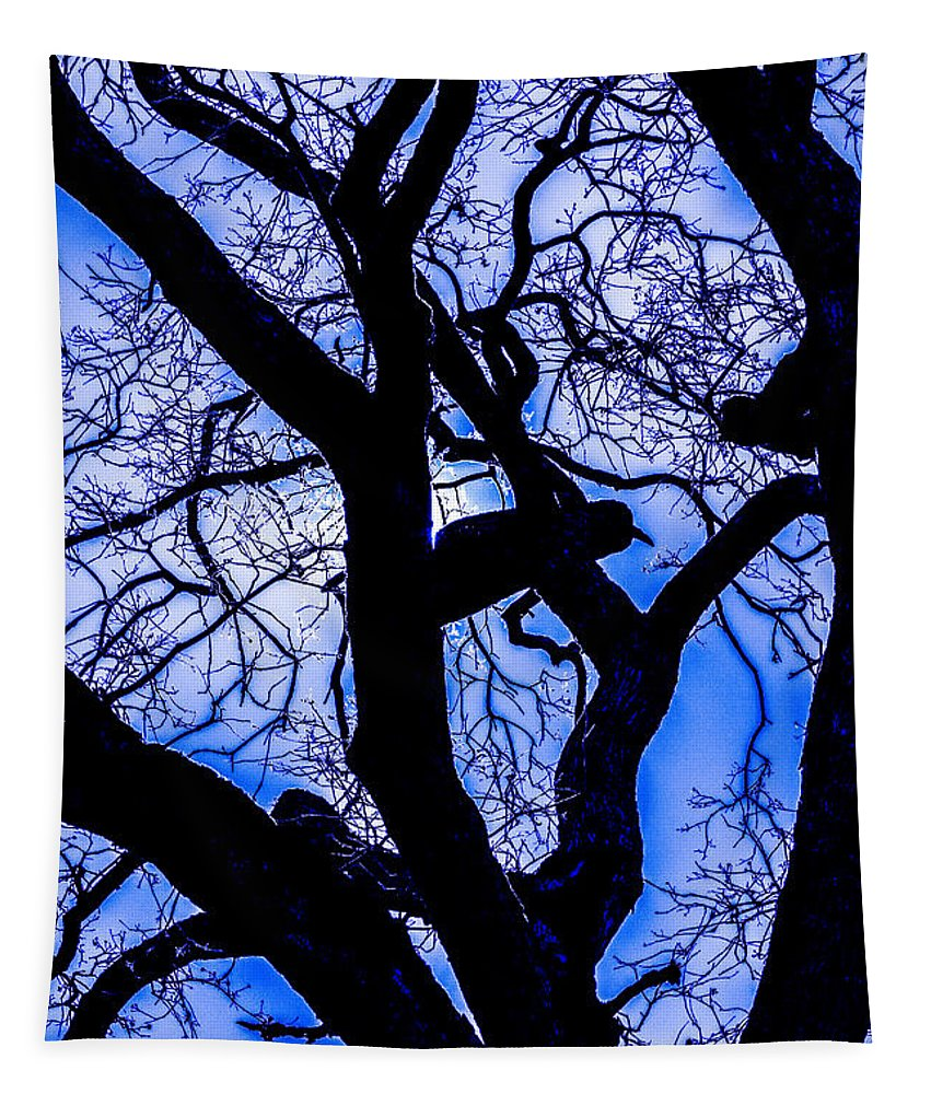 Frosty Blue Abstract Tapestry featuring the photograph Frosty Blue Abstract by Mitch Shindelbower