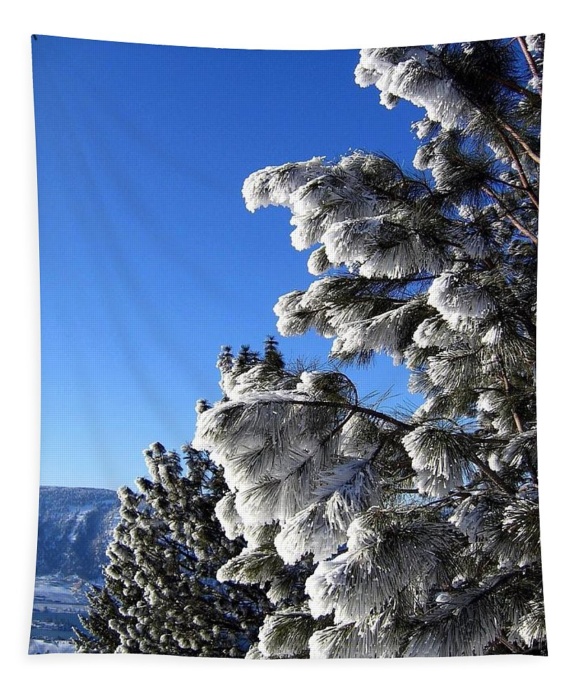 Frost Tapestry featuring the photograph Frosty Limbs by Will Borden