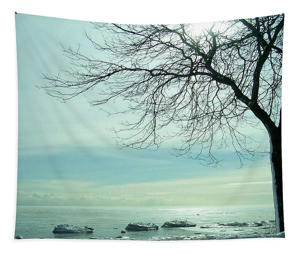 Lake Tapestry featuring the photograph Frozen February Morning by Susan McMenamin