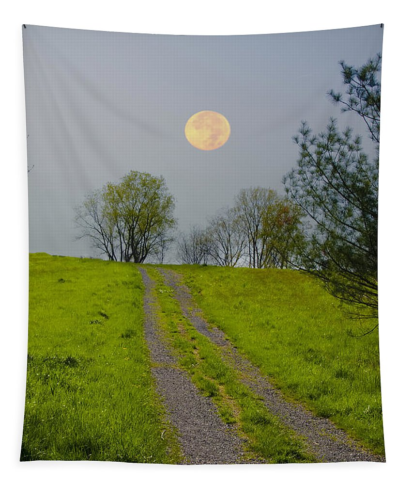 Full Tapestry featuring the photograph Full Moon On The Rise by Bill Cannon