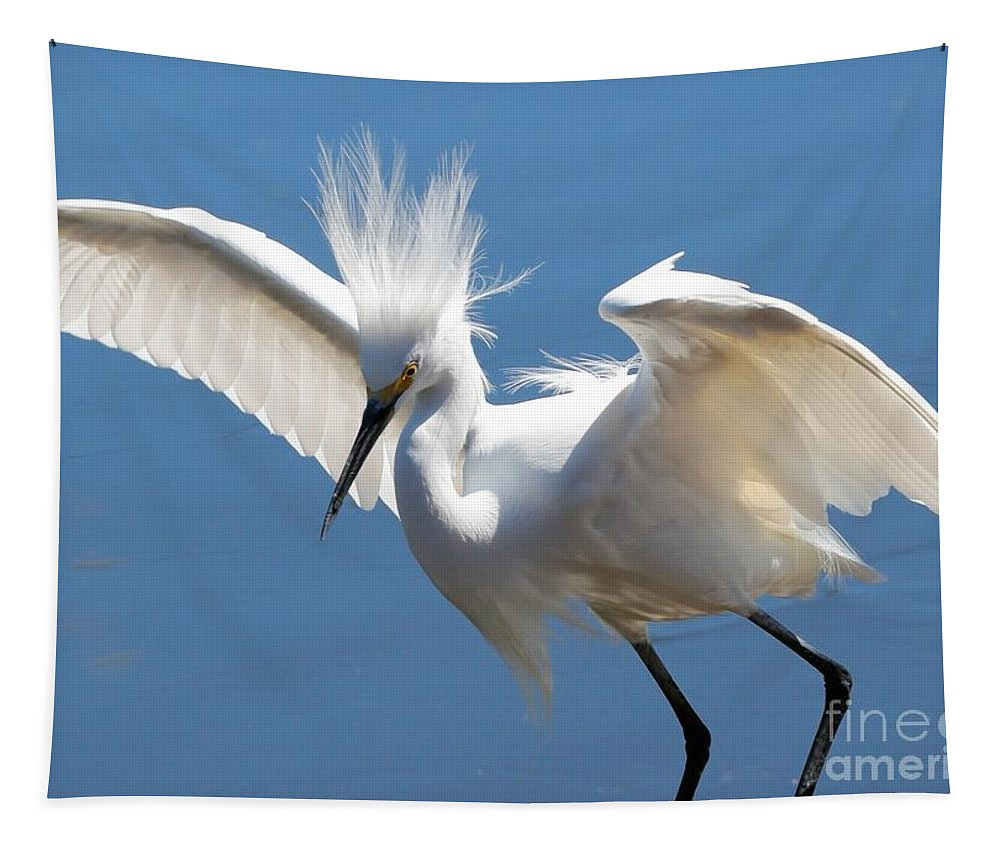 Egret Tapestry featuring the photograph Fun Snowy Egret by Carol Groenen