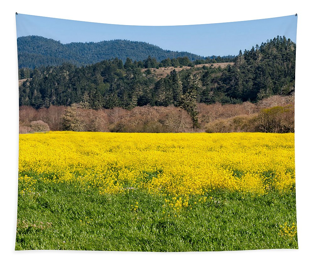 Wild Tapestry featuring the photograph Garcia River Floodplain In Spring by Kathleen Bishop