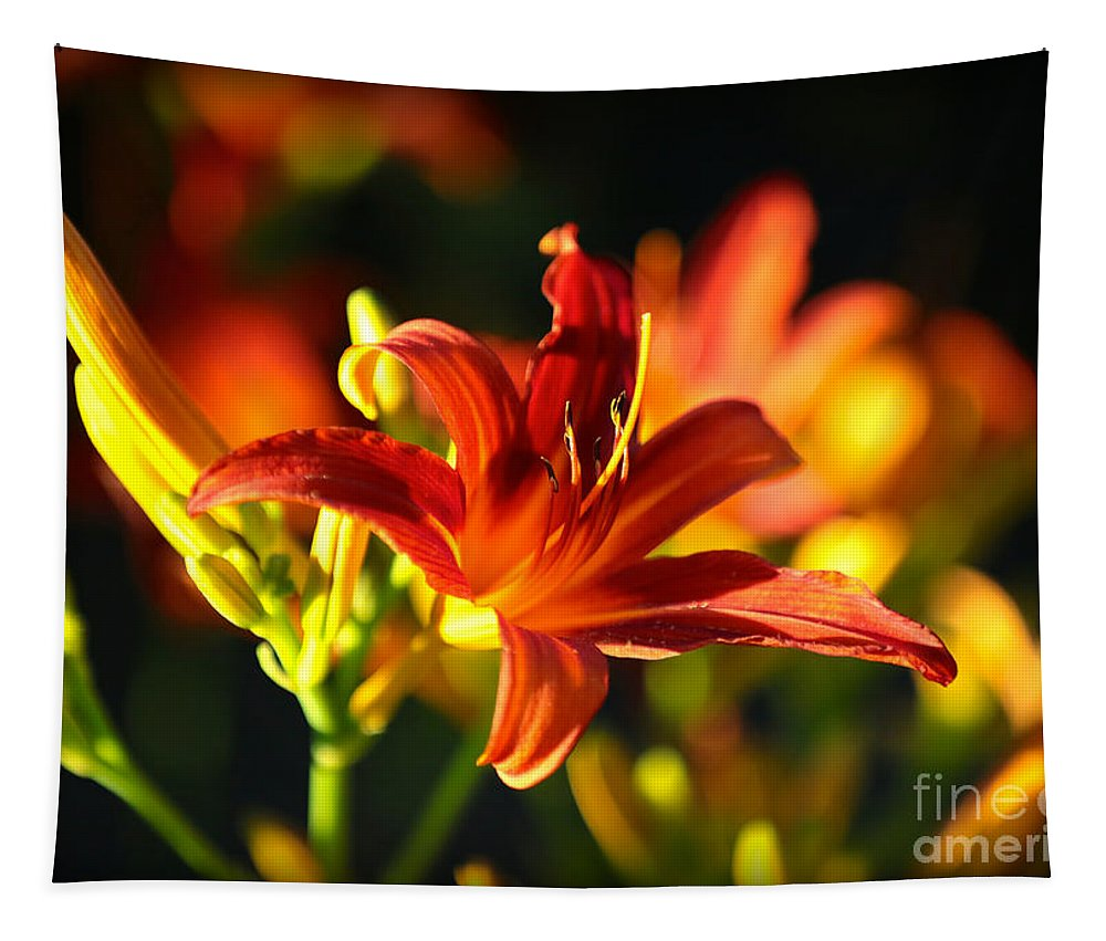 Daylilies Tapestry featuring the photograph Garden Glow by Carol Groenen