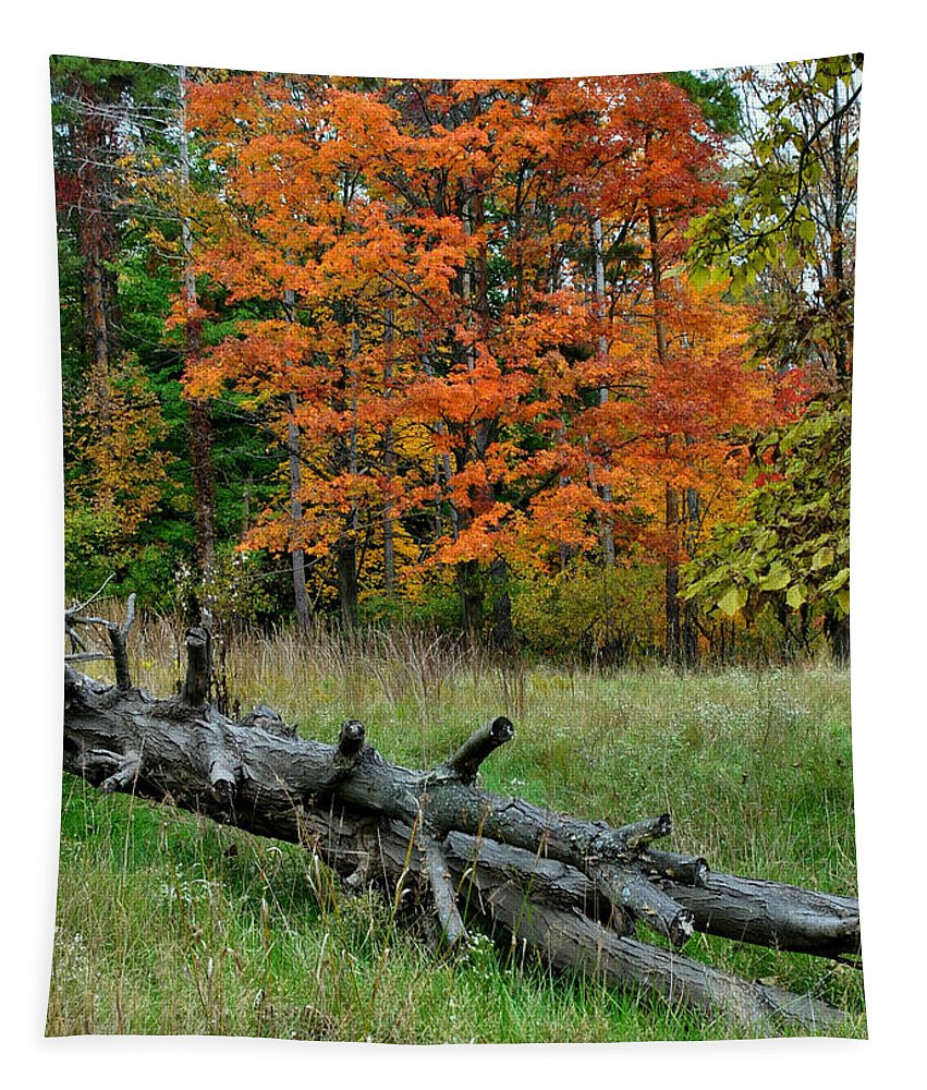 Landscape Tapestry featuring the photograph Generations Past And Present by Frozen in Time Fine Art Photography
