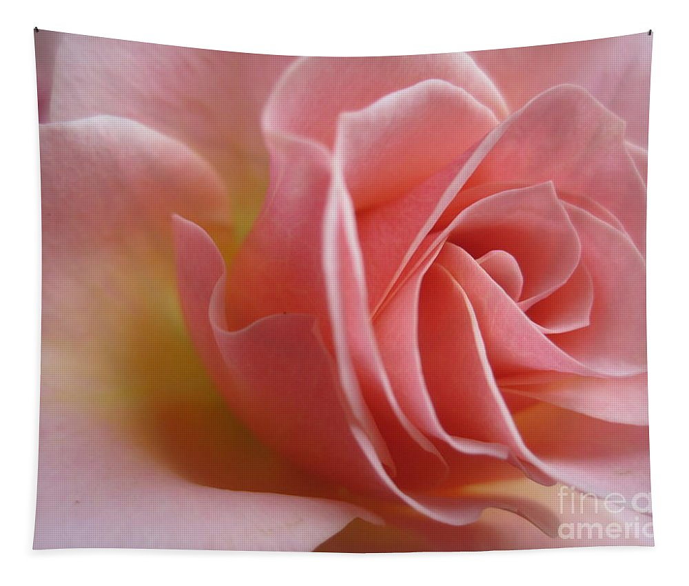 Floral Tapestry featuring the photograph Gentle Pink Rose by Tara Shalton