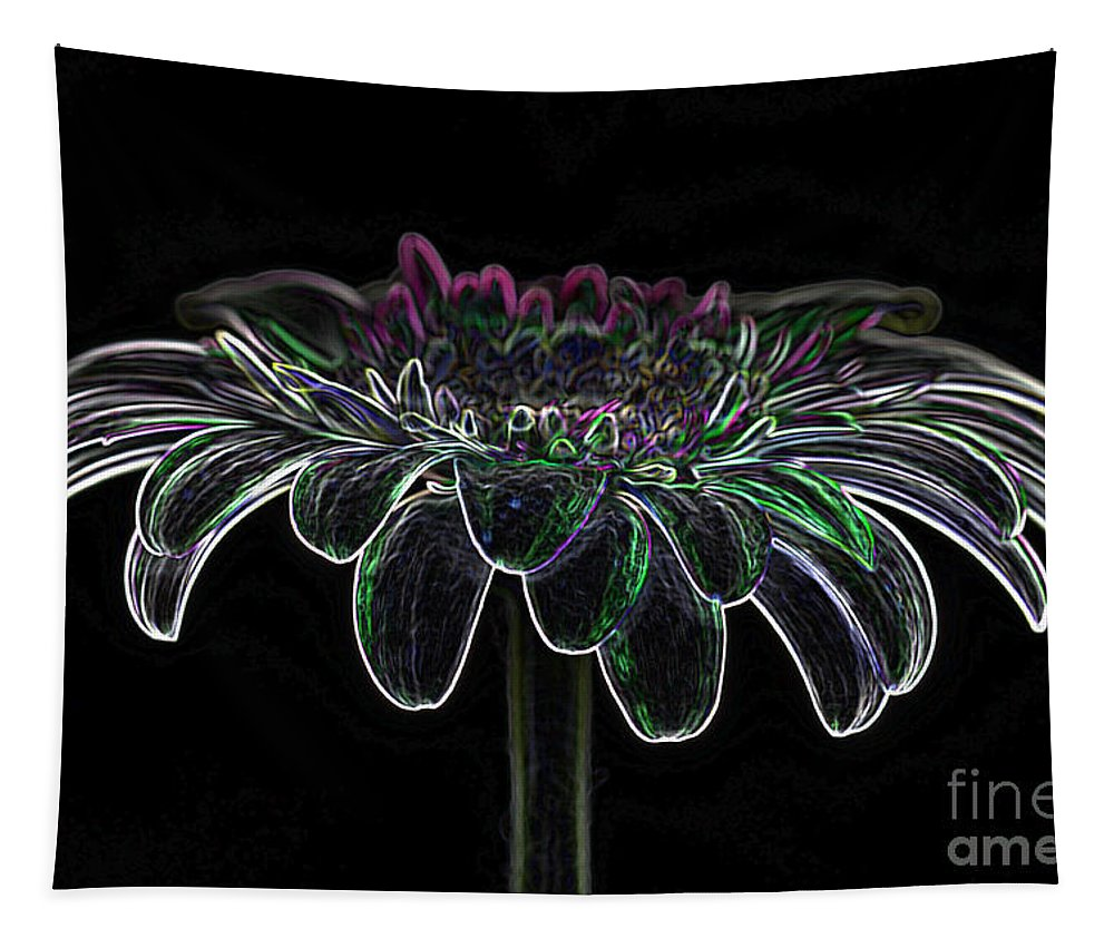 Pink Gerbera Flower Tapestry featuring the photograph Gerbera Glow 4 by Steve Purnell