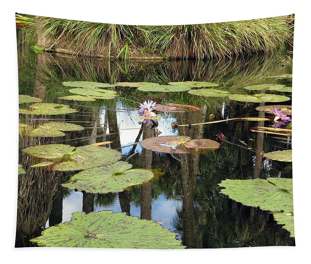 Giant Water Lilies Tapestry featuring the photograph Giant Water Lilies by Zina Stromberg