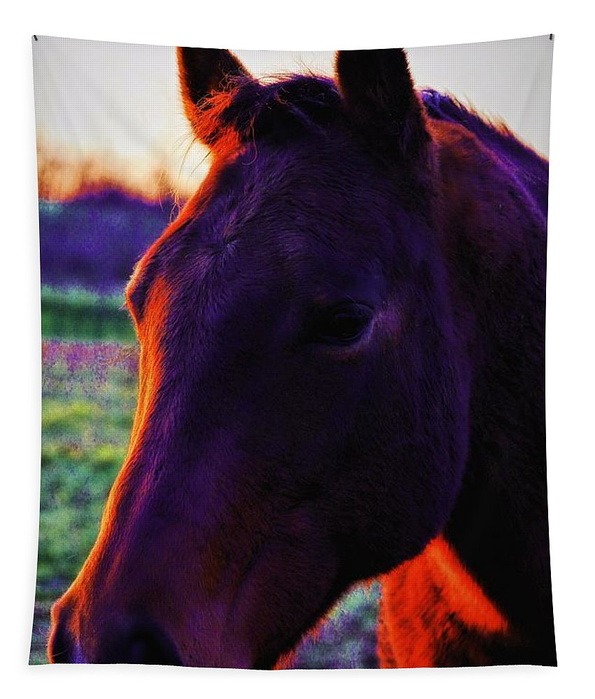 Horses Tapestry featuring the photograph Glamour Shot by Robert McCubbin