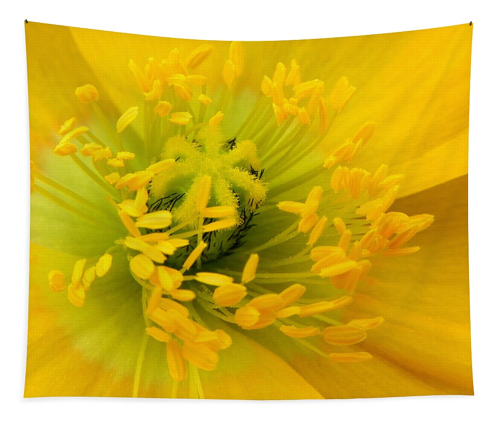 Flower Tapestry featuring the photograph Glory Of Nature by Deb Halloran