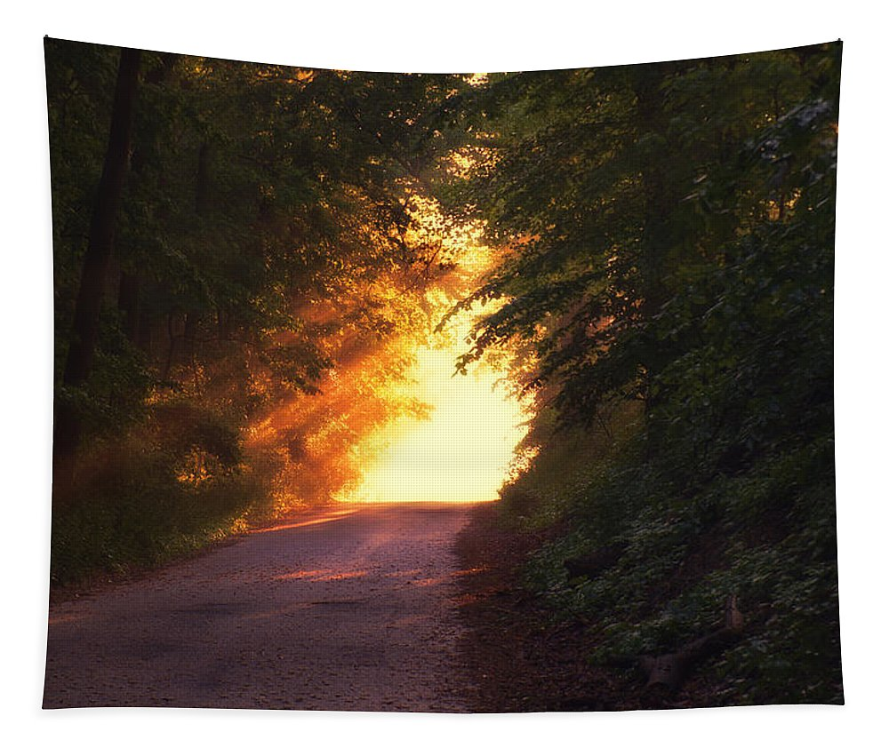 Glow Tapestry featuring the photograph Glowing Morning by Mountain Dreams