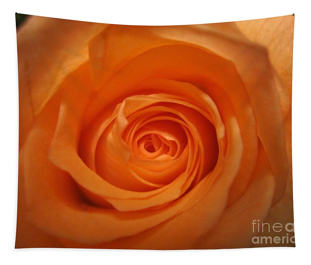 Floral Tapestry featuring the photograph Glowing Orange Rose by Tara Shalton