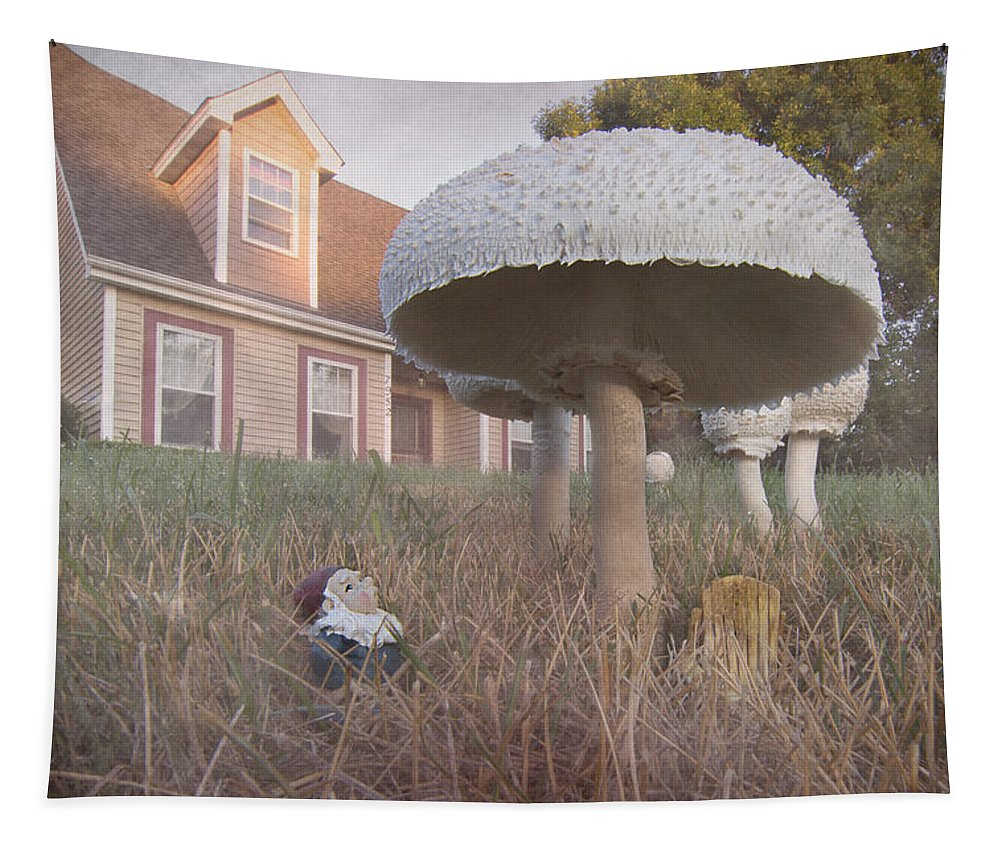 Gnome Tapestry featuring the photograph Gnome Home by Patti Deters